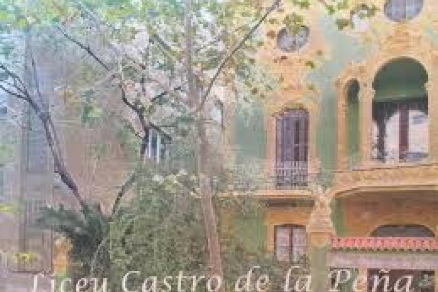 Liceu Castro De La Peña Buscar Cole